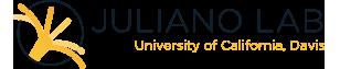 Juliano Lab